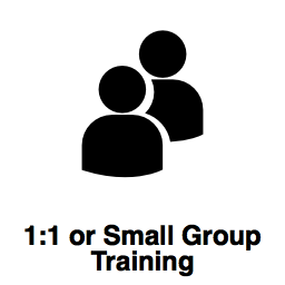 One to One or Small Group Training